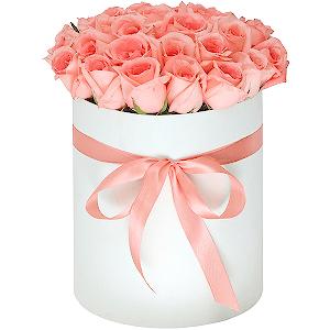 Доставка цветов в альметьевске недорого какой подарок купить руководителю мужчине на день рождения